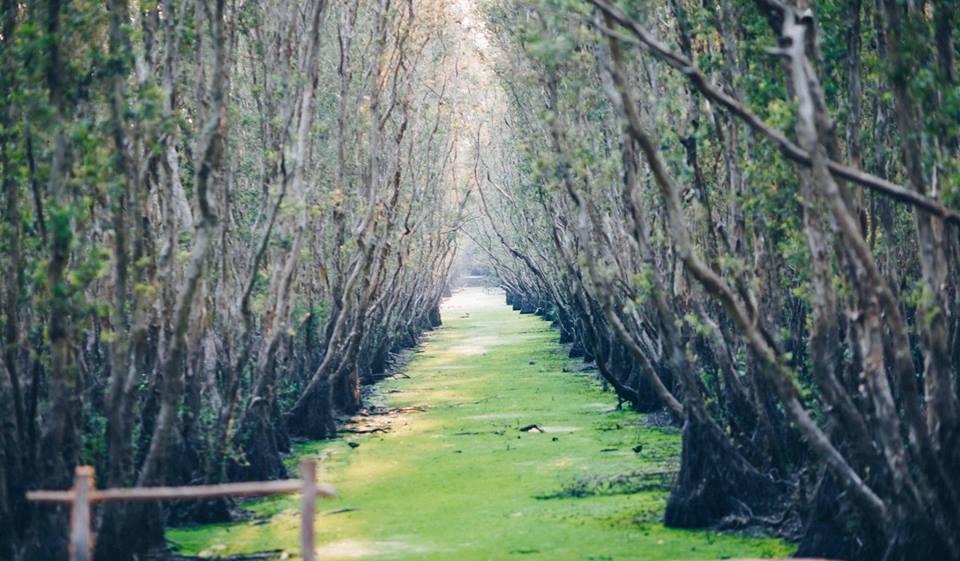Tour Quảng Ngãi – Hà Giang – Cao Bằng – Bắc Kạn